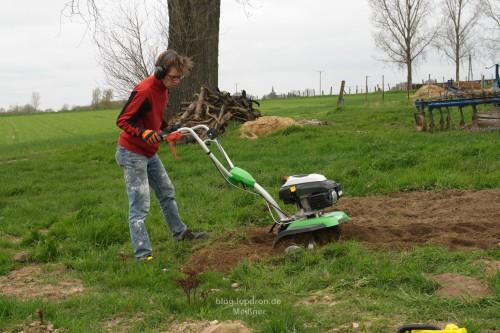 Garten umgraben, der Spaten bricht