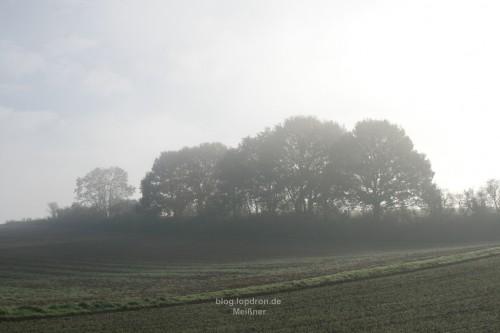 Landschaft im Nebel und die Sonne kämpft