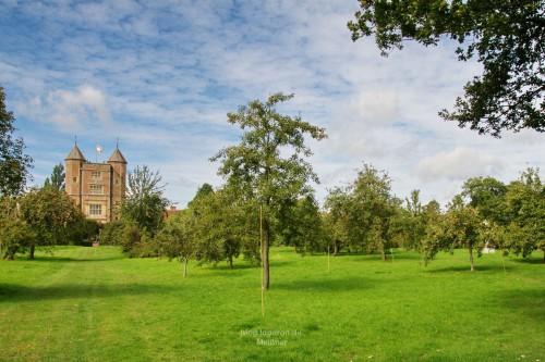 Turm mit Obstgarten