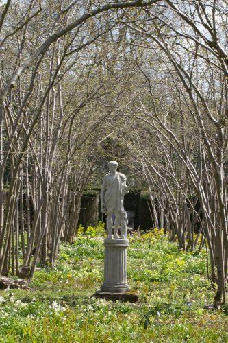 Nusssträucher mit Statue